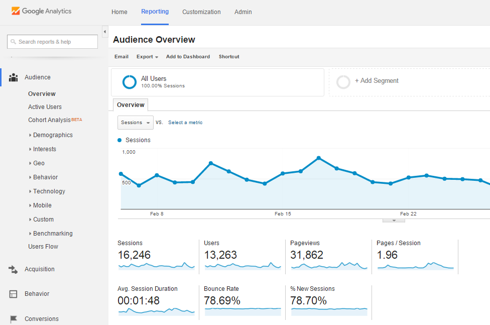 Google Analytics_Audience