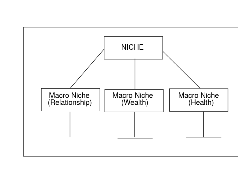 types of niche